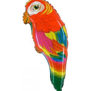 Balon papuga balony zwierzęta balony z helem poznań balony na hel w poznaniu